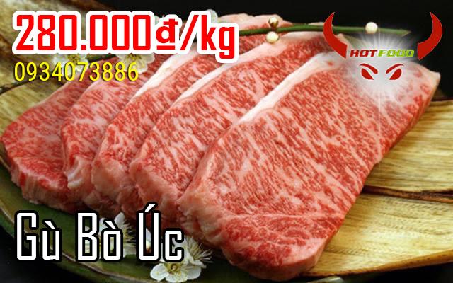 Đặc điểm của gù bò Úc ngon, chất lượng